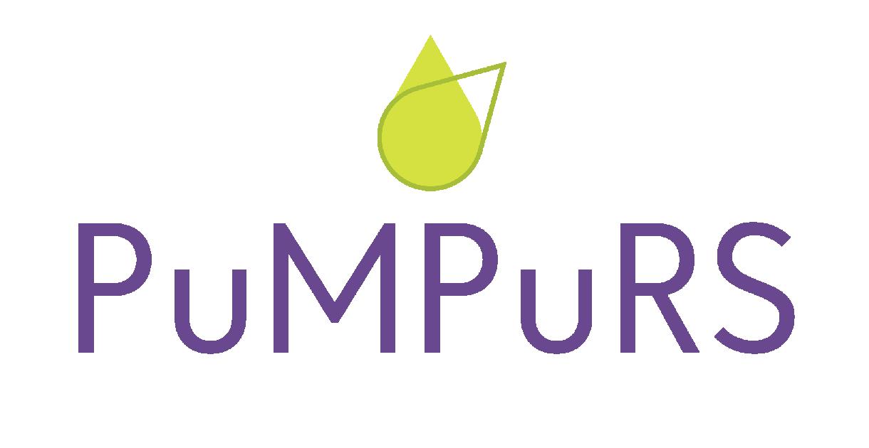 """Projektā """"PuMPuRS"""" realizētais 2020./2021.mācību gadā"""